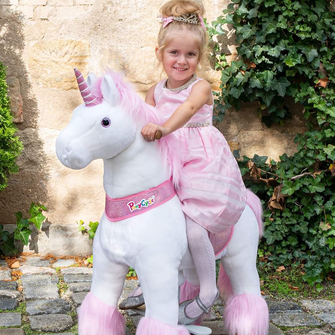 Ponycycle Ratgeber