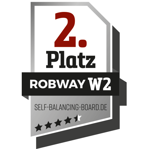 2. Platz bei self-balancing-board